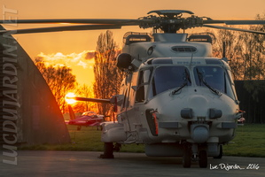 Belgian Air Force - NH90