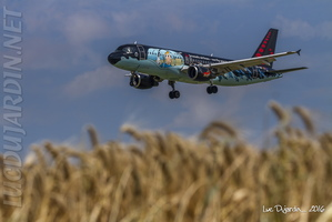SN Brussels Airlines - Rakham