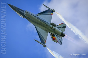 Belgian Air Force - F-16 Solo Display