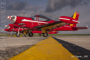Belgian Air Force - SF-260 Marchetti - Red Devils