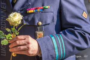 Belgian Air Force - Remembrance Day 7