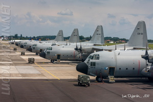 Belgian Air Force - C-130