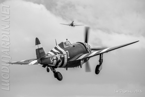 U.S. Air Force - P-47 D-Day