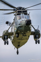 German Air Force - Sea King